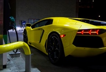 Exotic Cars / by Kim Clinton