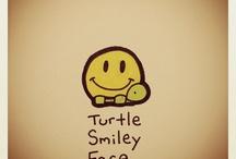ik ben een schildpad
