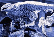 Águias da Portela / Série Águias da Portela (ordem cronológica)