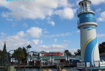 SeaWorld Orlando / Lots of fun things to see and do at SeaWorld Orlando!