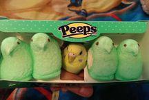 słodkie papużki