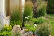 Front Landscape / by Maggy May & Co.
