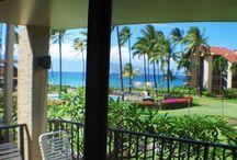 Maui / by Adina Robinson