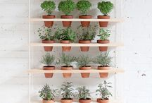 Herb garden / I want to create a cool but cheap vertical herb garden