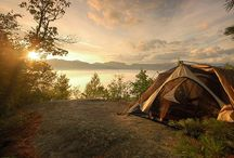 Camping / by Ashley Huffman