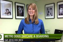 Our Happy Customers Love Us! / Video Testimonials from our awesome customers! / by Metro Dogs Daycare & Boarding MN