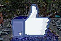 SÍGUENOS FINCA HOTEL PANORAMA / Conoce nuestras redes sociales y enterate de todo lo que tenemos para tí.