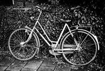 Bicycles / Black & white