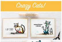 Crazy Cats, etc..
