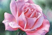 Róże rose / Malowane akwarelą i nie tylko