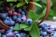 Fruits..!!!