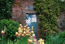Gardens, Outdoor living / by Nancy Kroeker Boothe