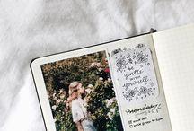 Journal / dear journal...