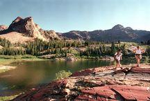 Utah I love you  / by Aubrey Porter