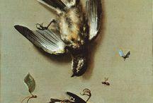 Natura morta / Nature morte / Still life