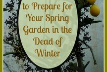 Winter Landscaping and Gardening