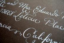 Typography, Calligraphy & Illumination