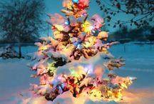 Christmas / by Sage DesRochers