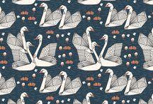 Swans + Flamingos