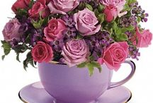 Valentine Roses / Beautiful valentine roses flowers for your sweetheart. / by Mydearvalentine .