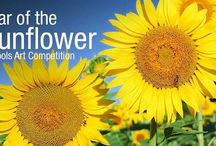 Schools Art Sunflower Competition / *WIN up to £1000 for YOUR child's school!*  Hayes Garden World Summer Competition this year focuses on primary schools across the UK. If you have a child (or teaching a class) 11 years and under, we want them to design a packet for sunflower seeds.  Enter your child or school today: http://bit.ly/SunflowerCompetition  The 1st prize is £1,000, 2nd prize is £750 and the 3rd prize is £500 for the winning school.