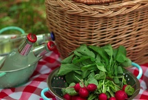 Fun and taste with a gourmet picnic - Idee per un picnic gourmet gustoso e divertente   / Dishes, picnic baskets e mise en place for a gourmet picnic.