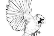 Sketch Tattoo Design