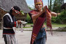 Traditional Dance / Tarian traidisonal