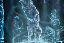 Wolves: Real and Imagined