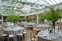 Enchanted Forest Themed Wedding