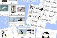 Antarctica and Arctic unit themes /   #montessori