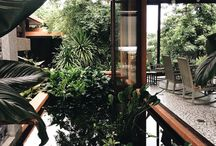 My home - courtyards