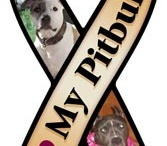 Pitbulls,Rescues,&Adoptions<3<3 / by Katie Corkill