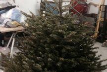 Juletræ - andet