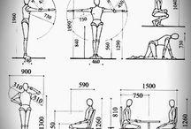 Antropometria y diseño