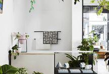 Botanical styling for Vanil