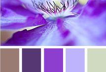 Colores y tonos