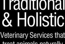 Colorado Veterinarians Who Practice One or More Modalities in Holistic and Integrative Veterinary / http://www.bestcatanddognutrition.com/roger-biduk/list-of-900-u-s-holistic-integrative-veterinarians/