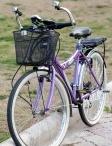 Bike - Sepeda