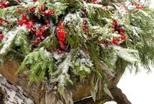 Feste Christmas / by ulle wulle