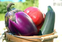 Organic Cooking / Organic & Kitchen Garden Cooking.  Be inspired to grow your own produce.
