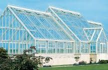 Green houses / This project is about grenn houses.