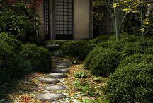 Garden tea ceremony