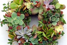 Floriculture n landscape