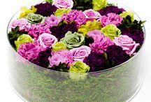 Flowerboxes-Nicolai Bergman