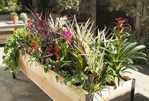 Jardinería factible