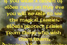 Magical Plants