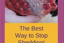 Pet grooming / Pet grooming tips