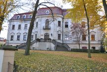 Sośnicowice - Pałac