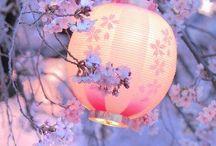 Japan nature, culture